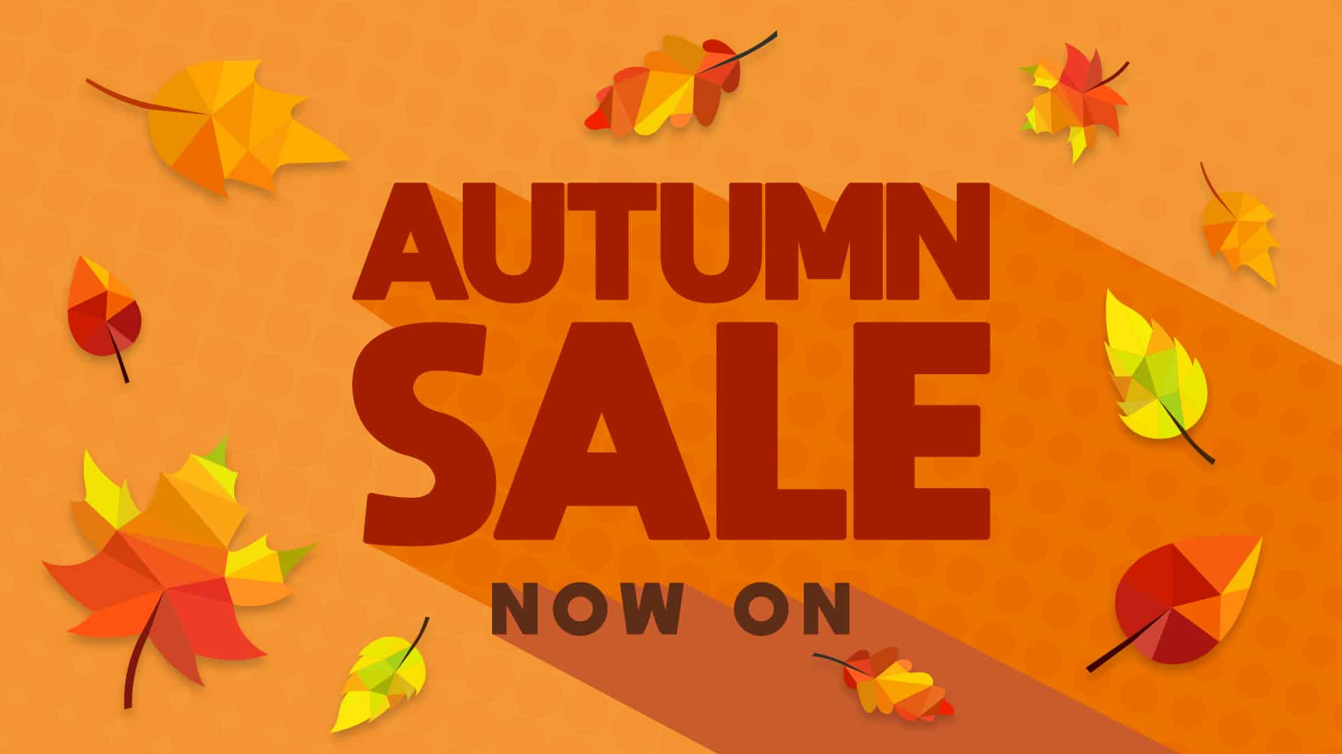Euro Fishing: Great Deals in the Autumn Sale